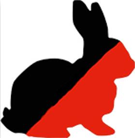 A-rabbit2.jpg