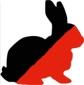 A-rabbit2