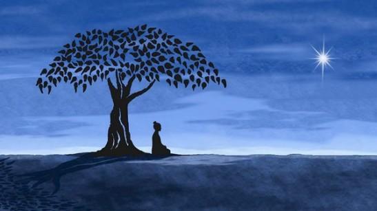 buddhetree