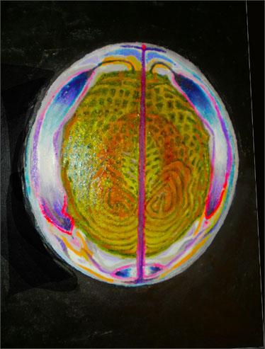 Hjärna4jpg