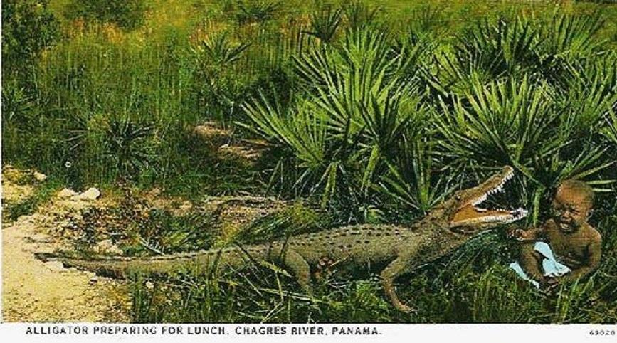 African-Slave-Babies-Used-as-Alligator-bait.jpg