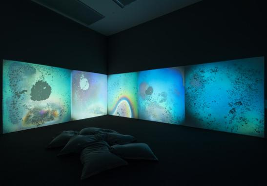 Liquid Crystal Environment 1965, remade 2005 by Gustav Metzger born 1926