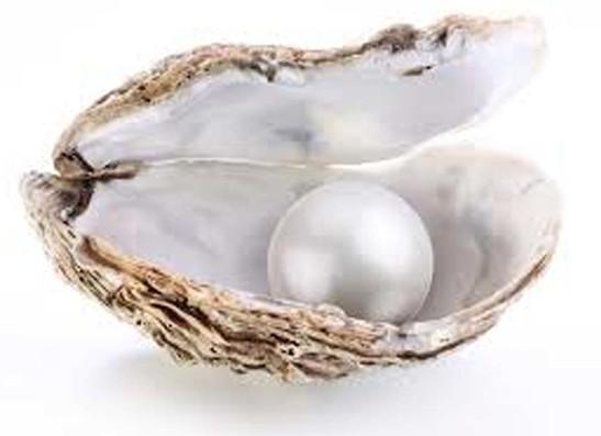pärla2