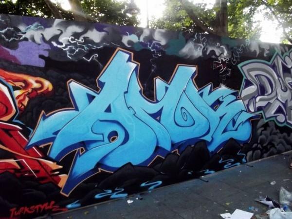 AMOM2011