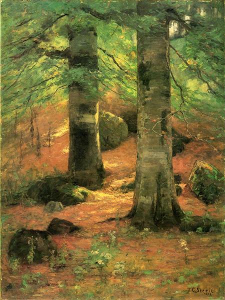 vernon-beechesTGSteele-1892.jpg