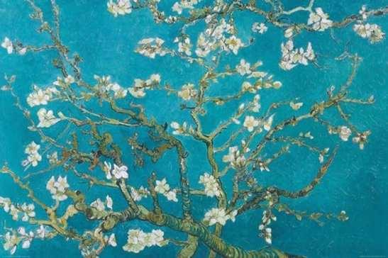 van_gogh_-_almond_blossom-38711810-16289989-org
